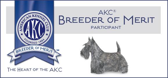 AKC Scottish Terrier Breeder of Merit