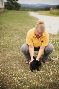 Shirescot Scottish Terriers Gettysburg Pennsylvania